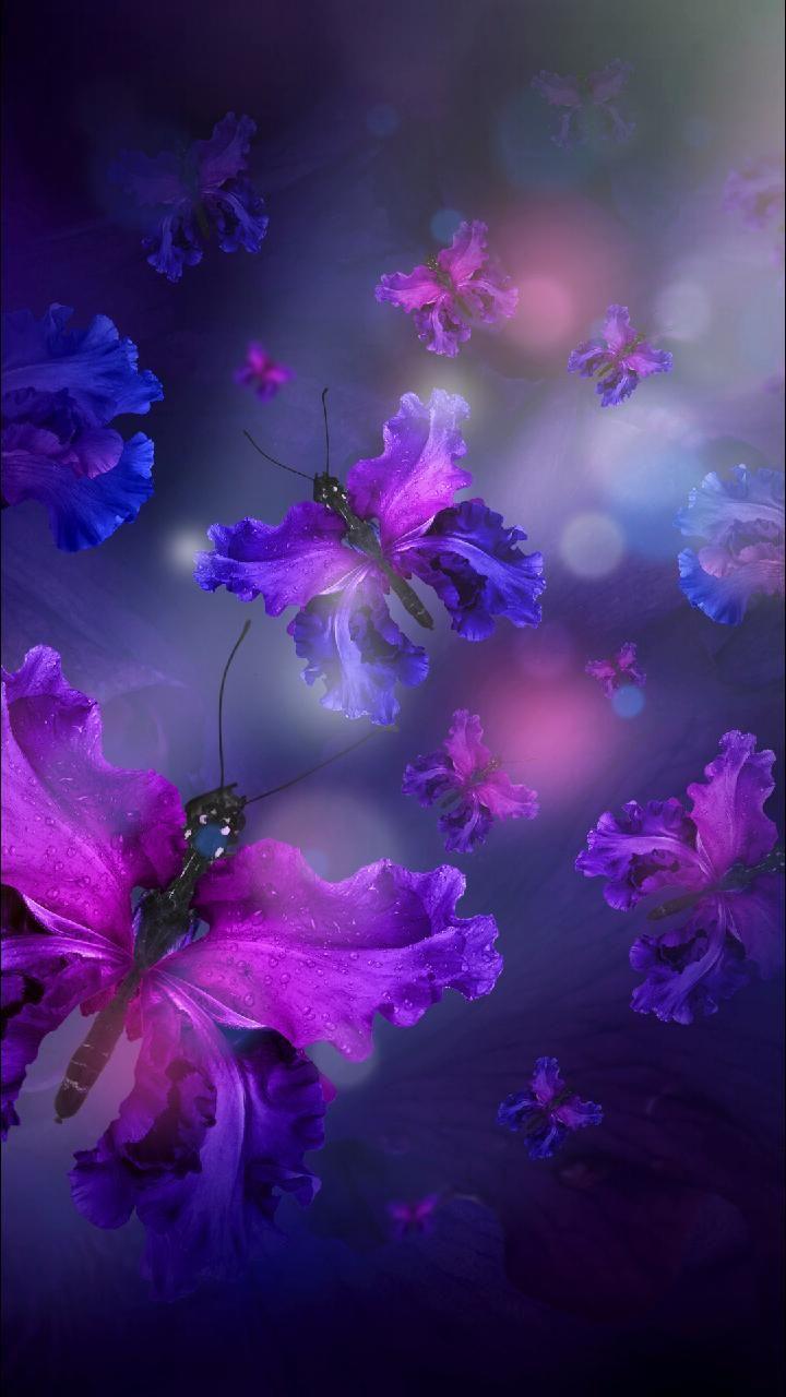 Download Butterflies Wallpaper by 7e Free on