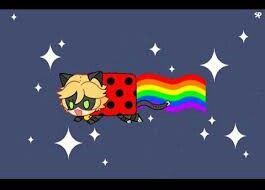Nyan cat is chat noir oh my gosh LOL