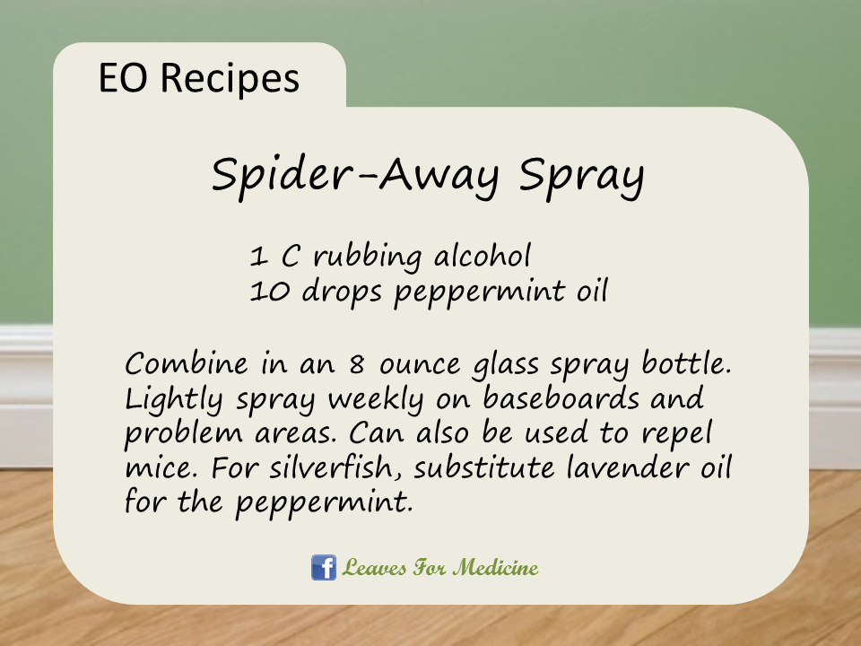Spider Away Spray Repel Spiders Mice Silverfish And More With