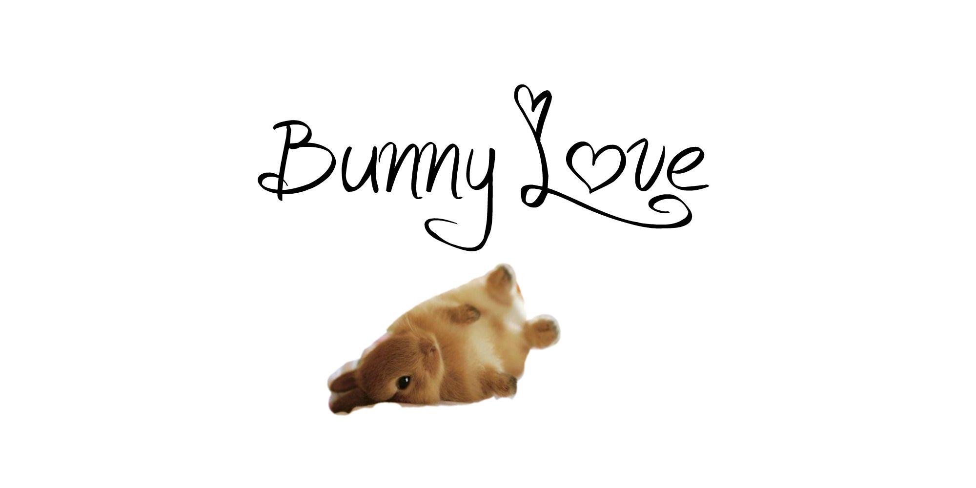 Bunny Love computer wallpaper