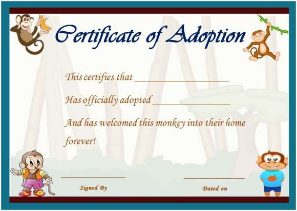 Image Result For Stuffed Animal Adoption Certificate Template Free
