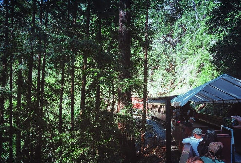 Camping Near San Francisco: Guide to 12 Awesome Campgrounds