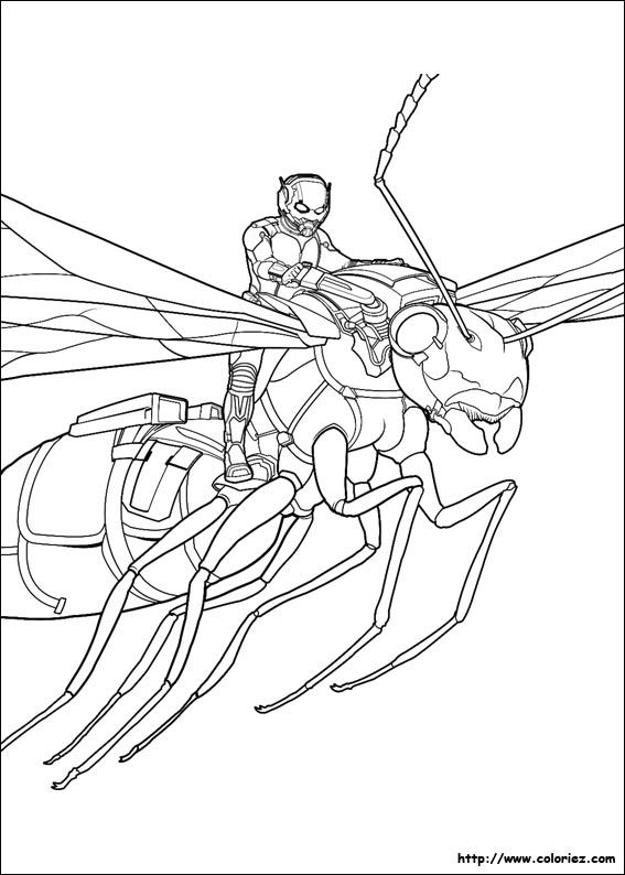Coloring Page Ant Man Superheroes 4