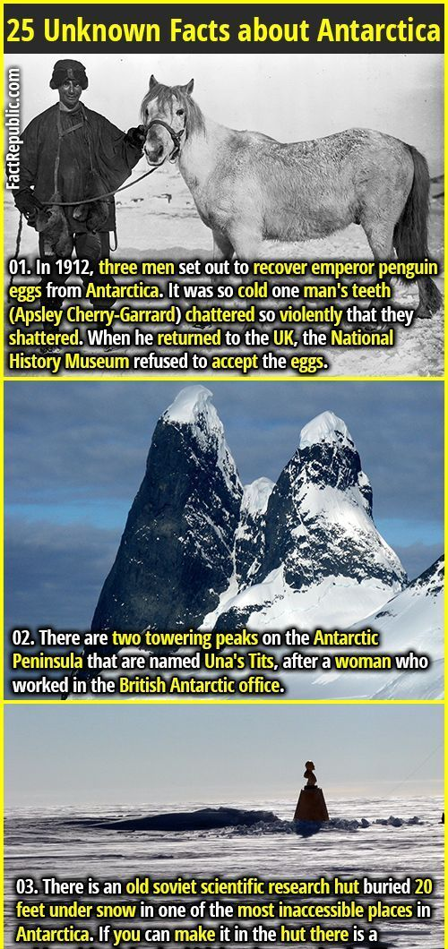 Unknown Facts about Antarctica  museum