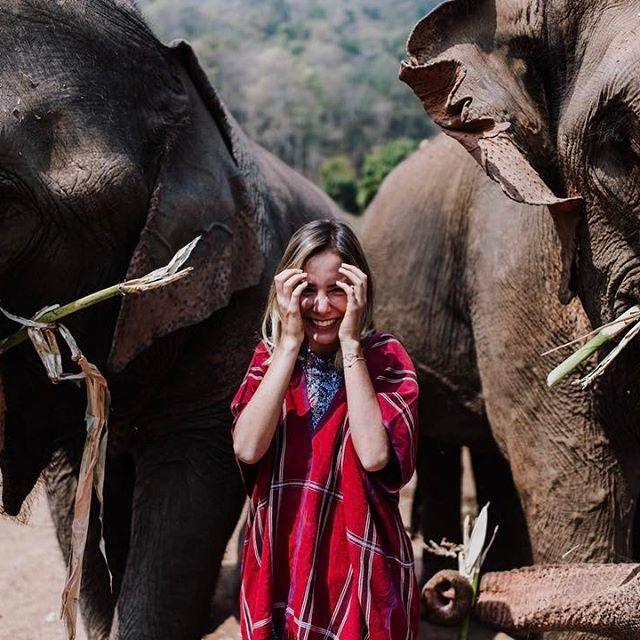 me senti menor que nunca do lado desses gigantes 🐘e saiu VLOG desse dia tão especia lá no canal! mostrei toda minha experiência com elefantes, clica no link da bio para ver! #luliwanderlust #lulinatailandia  foto: @managollo