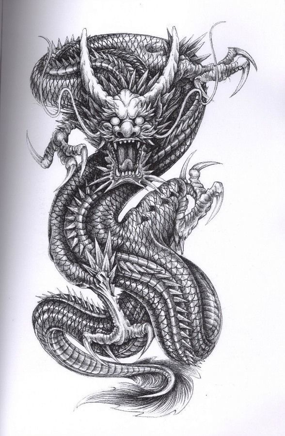 Dragon Tattoos History, Meaning, and Design Dragon Tattoos