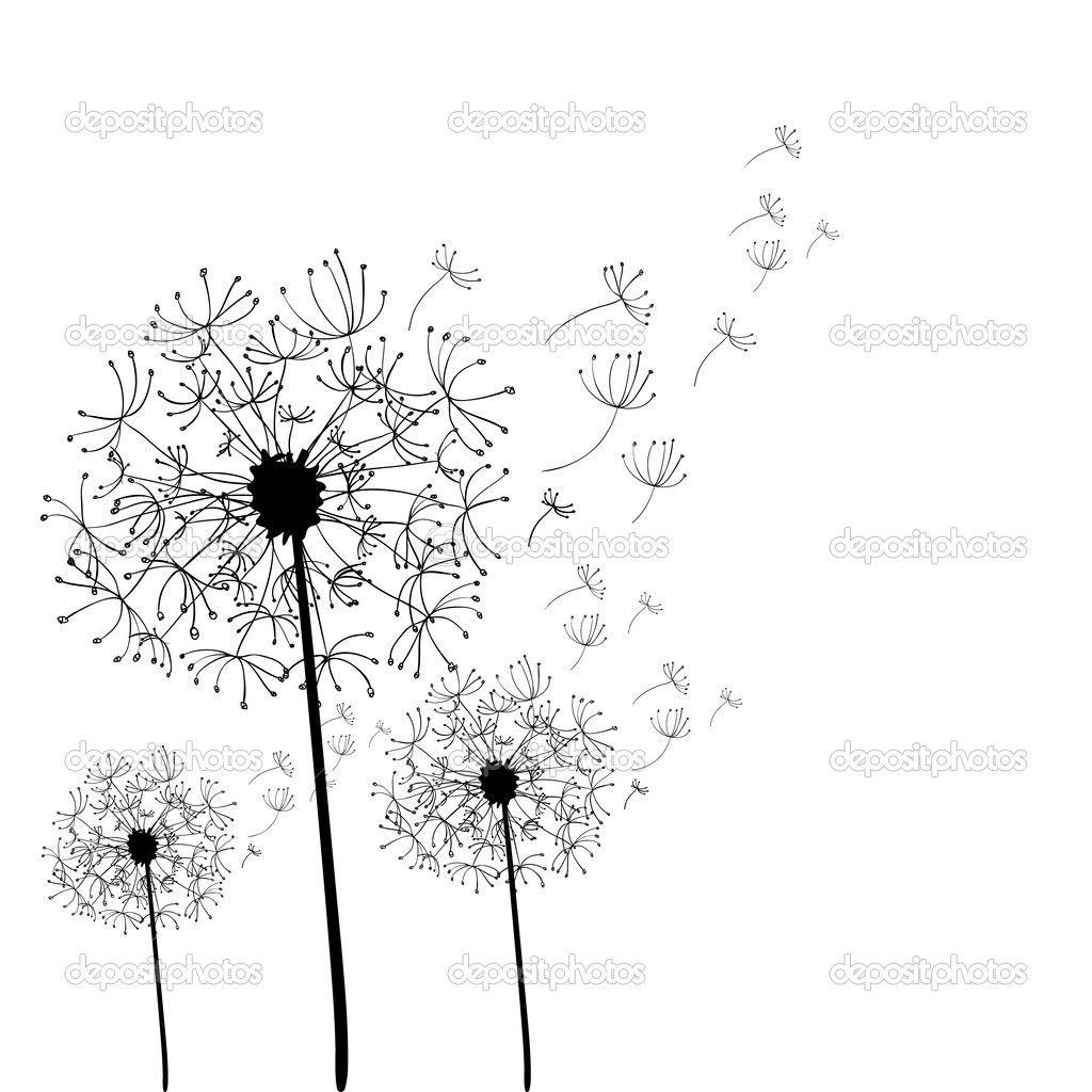 Hand drawn dandelion isolated - Stock Illustration: 20244425 ...