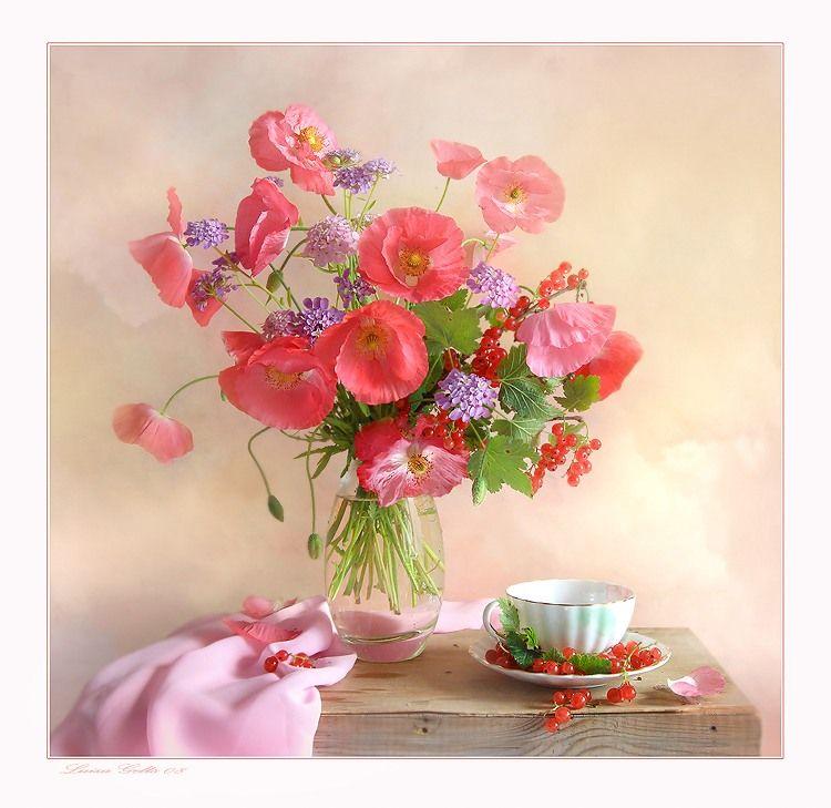 Картинки цветы добрый день
