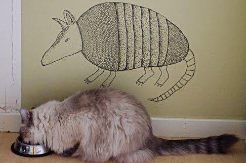 Ønsket. Både katt og armadillo.