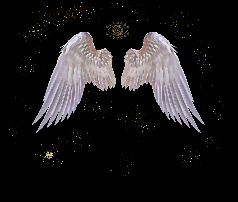 0ec8048cd99a6dbd1a601a0e69f038c1 via Angel-Wings