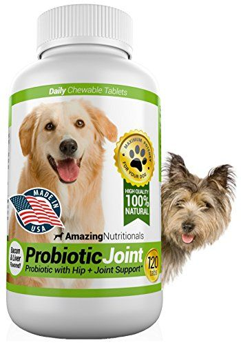 Recommended For Allergies Amazing Probiotics For Dogs 100 Pure