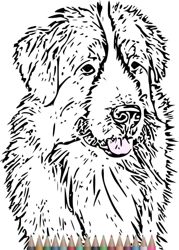 Adult Coloring Pages Dog Art Print Printable For Adults SvgInstant Download Therapy