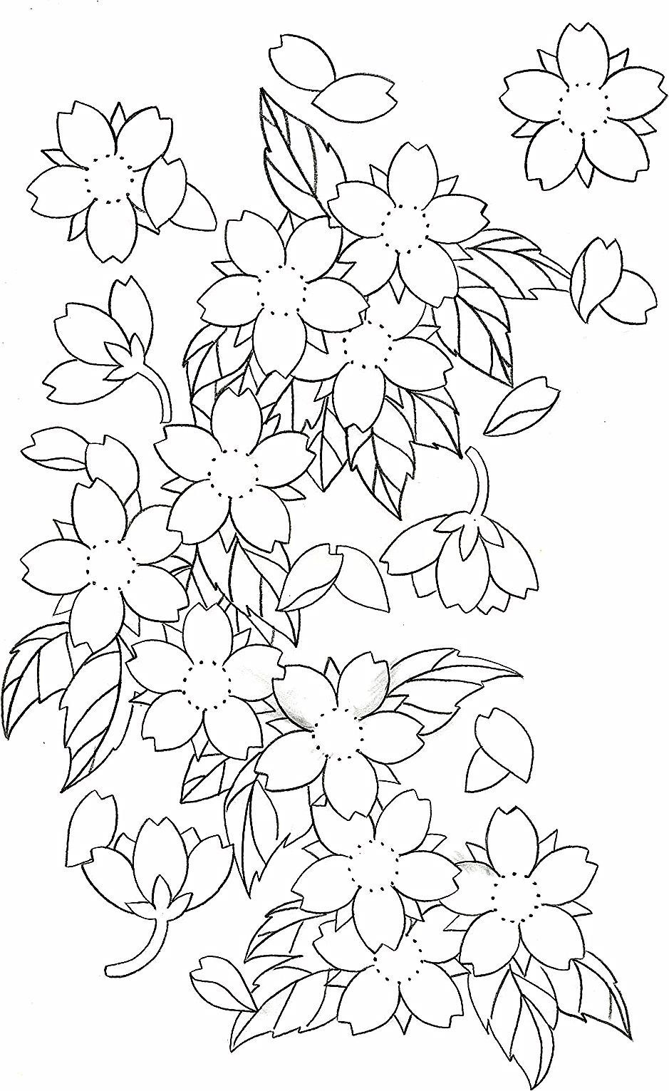 Cherry Blossom Tattoo Designs Cherry Blossoms In 2020 Cherry Blossom Drawing Japanese Flower Tattoo Japanese Tattoo Art