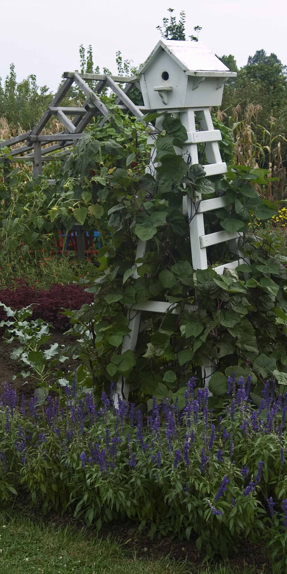 Bon Birdhouse With Trellis Base  What A Great Way To Decorate The Garden And  Still Have A Useful Trellis For Vines Etc. I Can See It In My Veggie Garden  With ...