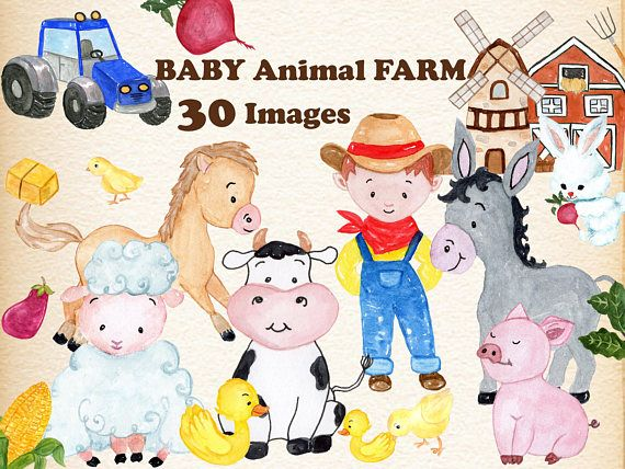 Baby Animals Farm Clipart Watercolor Clipart Farm Etsy Cute Animal Clipart Animal Clipart Farm Animal Nursery