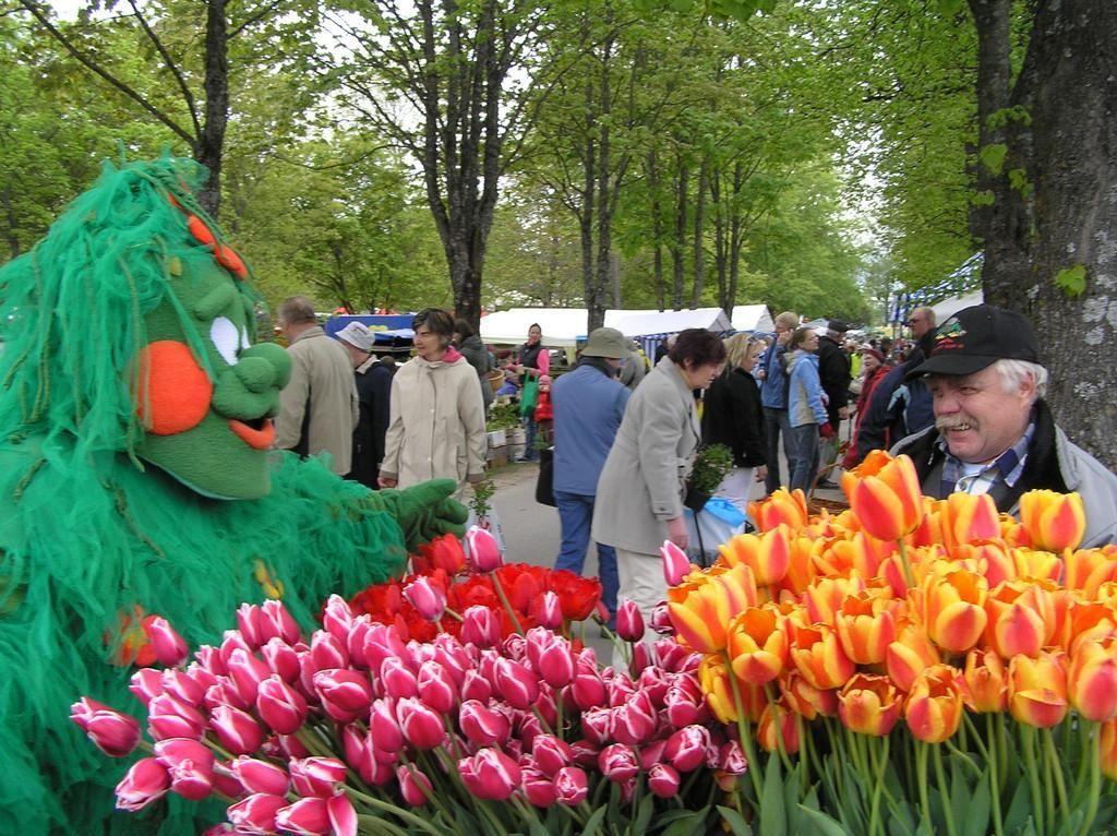 Türin kukkamarkkinat, Lillelaat, 19.5 - 21.5. järjestetään nyt 40:ttä kertaa pienessä Türin kaupungissa noin 100 kilometriä Tallinnasta kohti Tarttoa. Se on virolaisten viherpeukaloiden kevään kohokohtia. Myyjiä on paikalla runsaasti, useita satoja. Edustettuna ovat niin isot taimistot kuin paikalliset yksittäiset puutarhaharrastajat. Tarjonnan kirjo on laaja perennoista havupuihin ja marjapensaisiin. Täällä on myös markkinameininki kohdillaan: on musiikkia, ruokaa ja iloista mieltä…