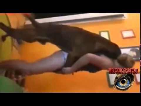 Dog mauls girl videos de mujeres y perros 19 mujeres que juegan con los hillary clinton com - Animales con personas apareandose ...