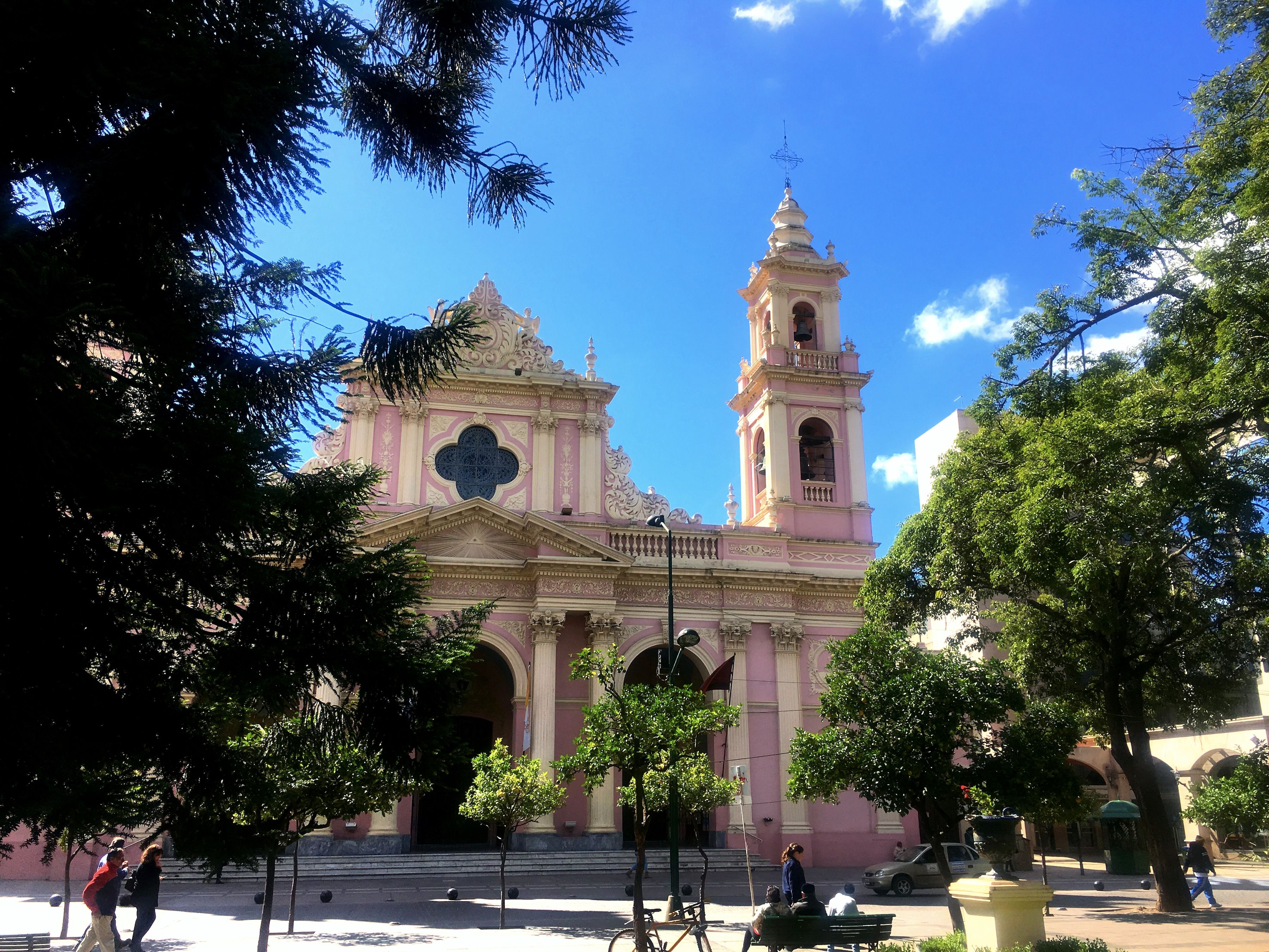 Salta's beautiful bubblegum-colored Cathedral, seen through the trees of the central plaza