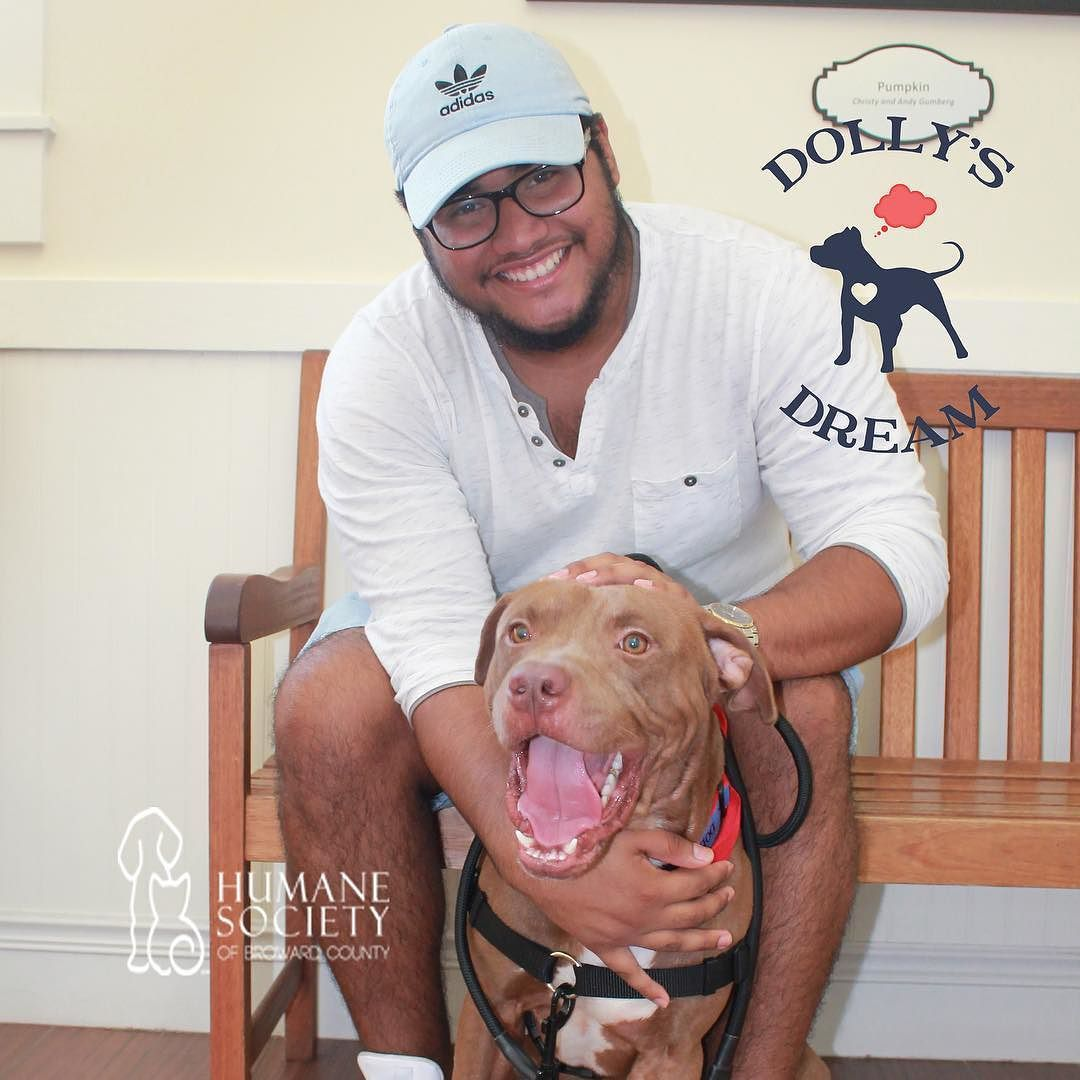 Handsome Tetris is all smiles since he got adopted from