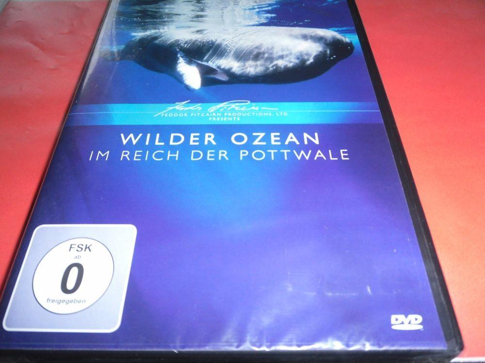 Wilder Ozean-Im Reich der Pottwale    OVP / NEU