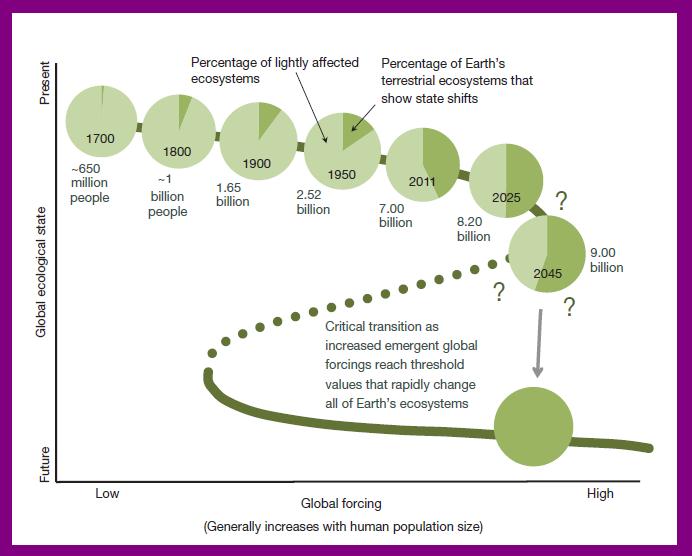 Representative Population to Ecosystem Damage Correlatio