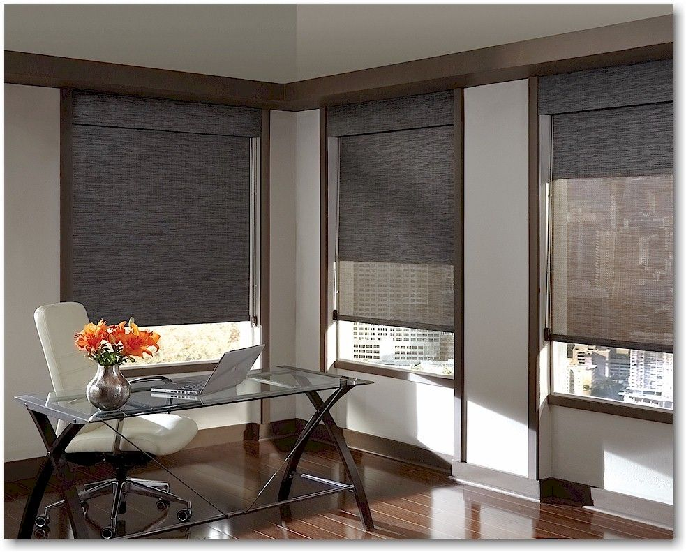 Hunter Douglas Designer Screen Window Shades Modern Window Blind Energy Efficient Window Treatments Contemporary Window Treatments