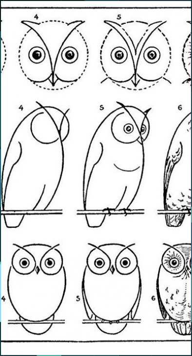 How to Draw an Owl – with Printable Worksheet