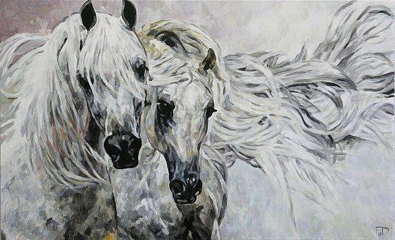 Arabian Horses by Jana Fox