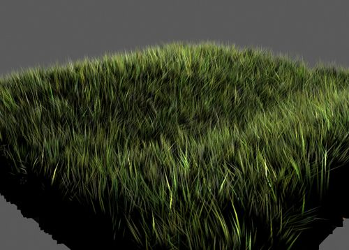 Creating realistic grass using the hair/fur modifier.