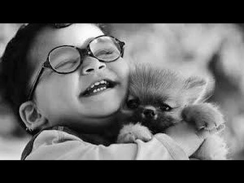 Dentro De Um Abraço Jota Quest YouTube Música Aumenta O - 30 adorable pictures babies puppies will melt heart