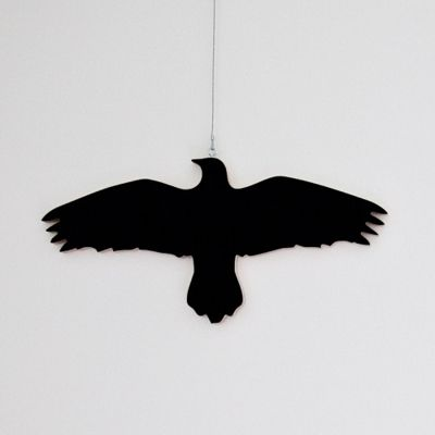 "Krummi bird hanger, designed by Ingibjörg Hanna Bjarnadottir  Krummi means Raven in Icelandic .Ravens are very attracted to shiny things, and will steal shiny objects to be used in their nests. The idea behind the bird hanger is to display your ""shiny"" clothes instead of hiding them away in a closet.."