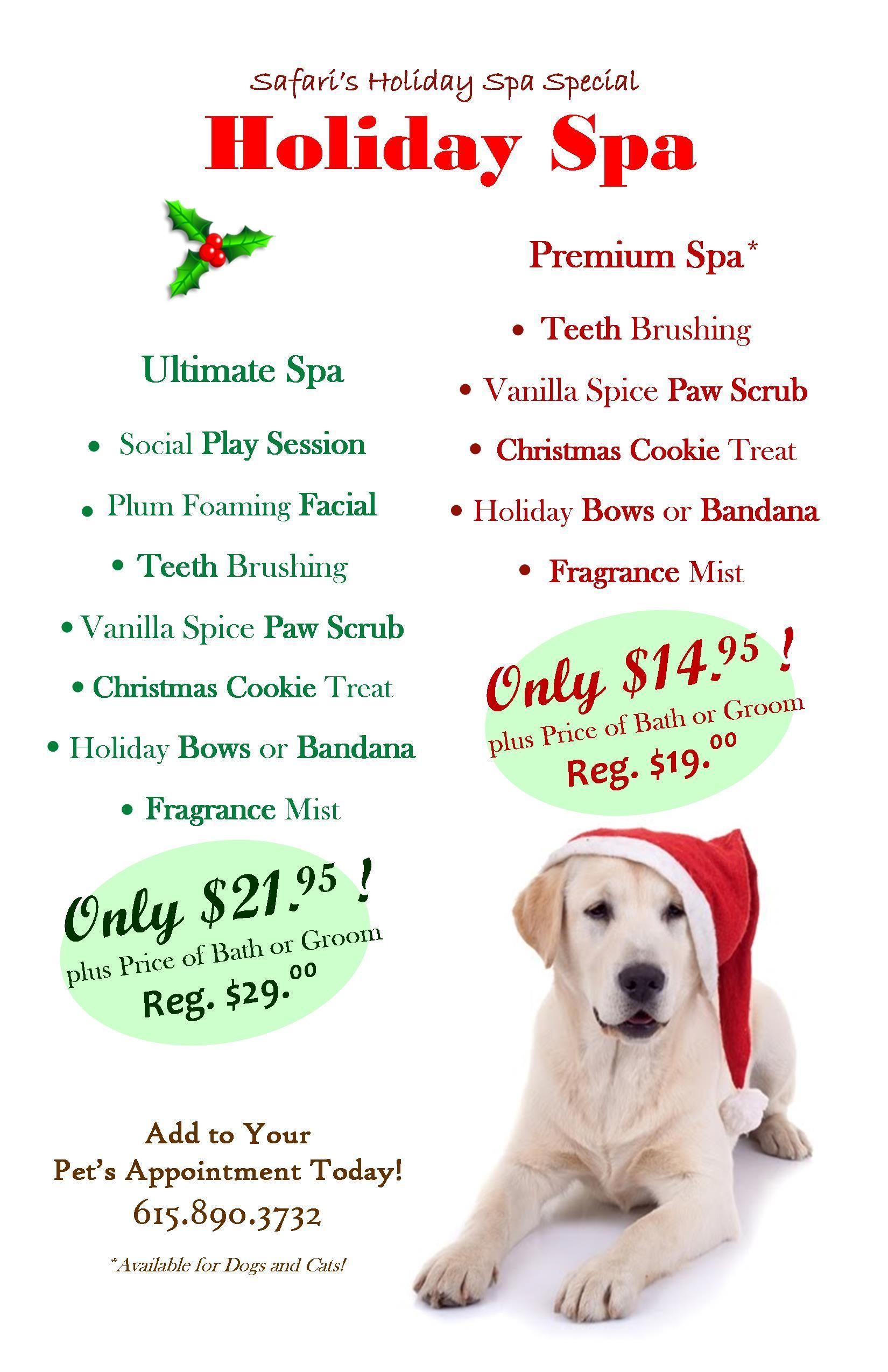 Pinned from Safari Pet Resort. Dog Grooming Holiday