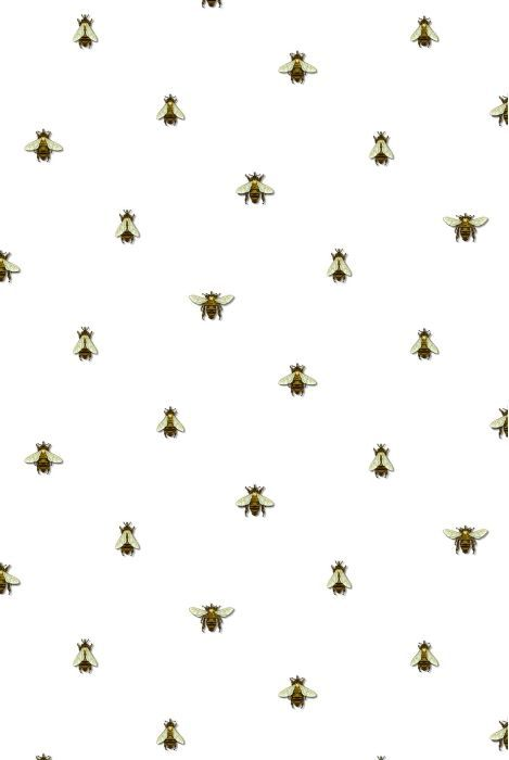 Timorous Beasties Wallcoverings Wild Honey Bee Allover Spotted Wallpaper Cute Wallpapers Pattern Wallpaper