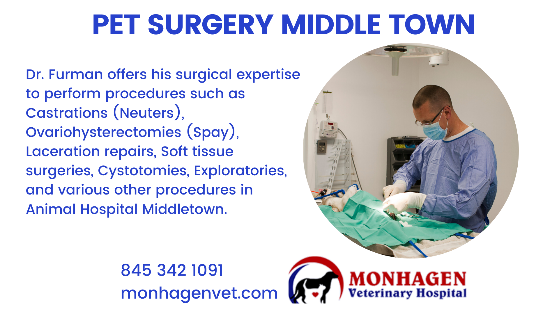 Pet Surgery Animal Hospital Middletown In 2020 Animal Hospital