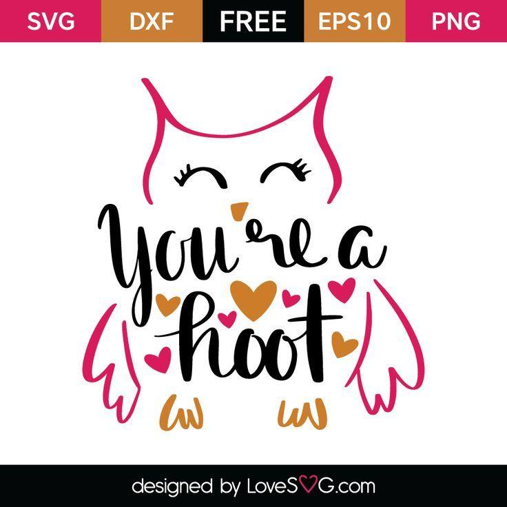 You're a hoot | Cricut, Cricut vinyl, Cricut air