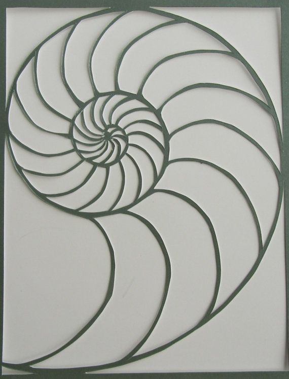 Nautilus Shell Silhouette Paper Cutout In Shimmery Light Green