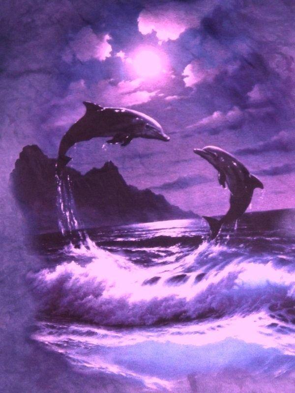 universo espiritual compartiendo luz la esencia delf n. Black Bedroom Furniture Sets. Home Design Ideas