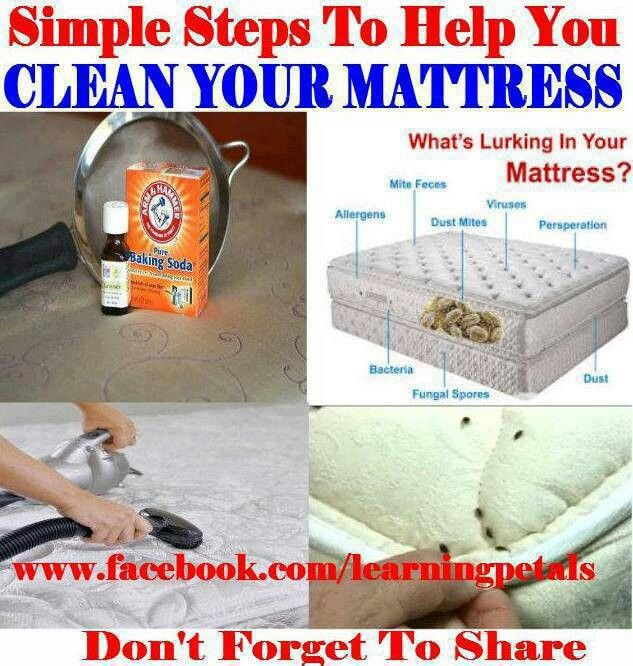 Get Rid Of Dust Mites Mattress Cleaning Mattress Cleaner Cleaning