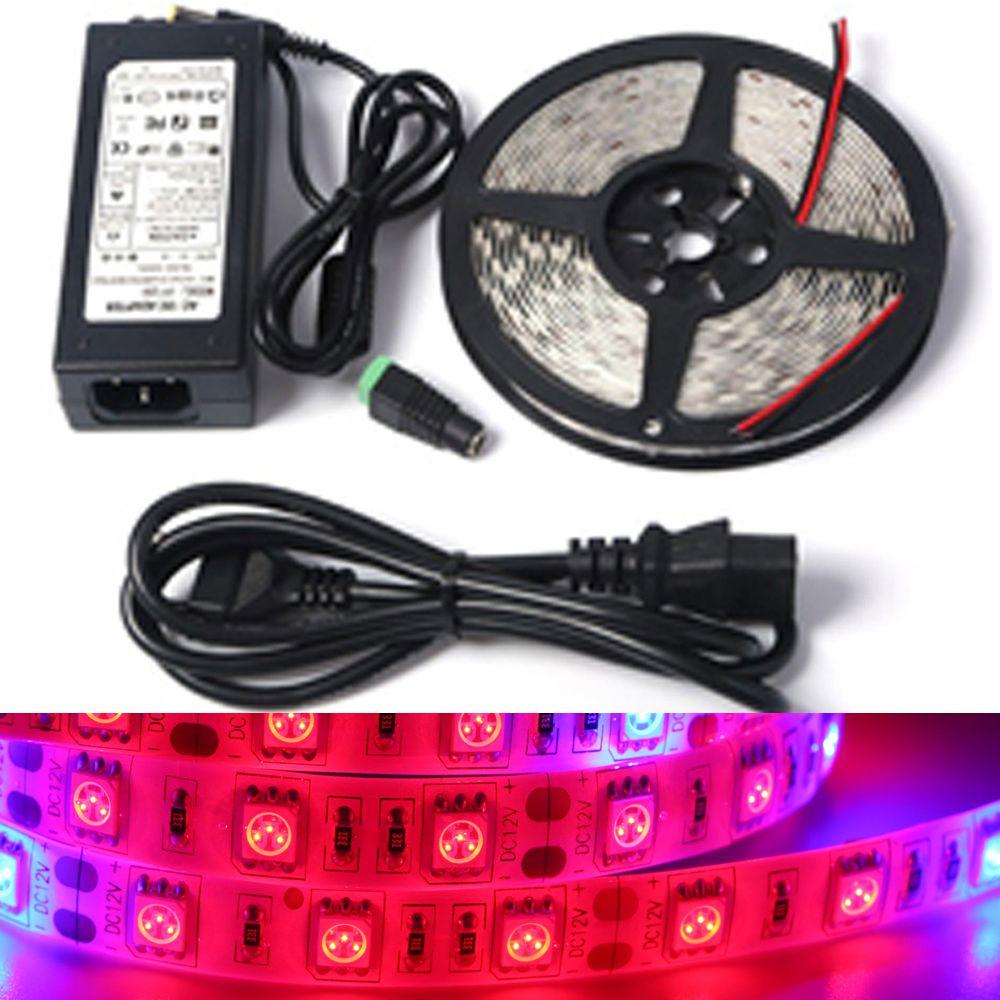 Spettro completo PRINCIPALE Coltiva La luce DC12V 1/5 M 5 rosso 1 blu impermeabile striscia PRINCIPALE lampada per la serra pianta Idroponica + adattatore di alimentazione