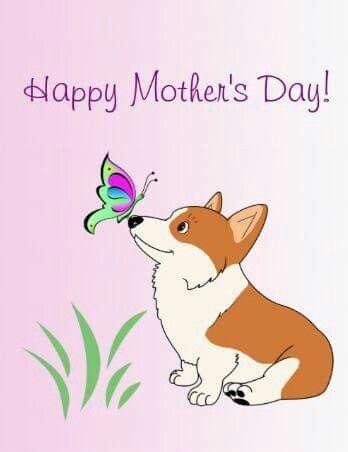 Corgi Happy Mothers Day Corgi Art Corgi Mom Crazy Corgi Lady