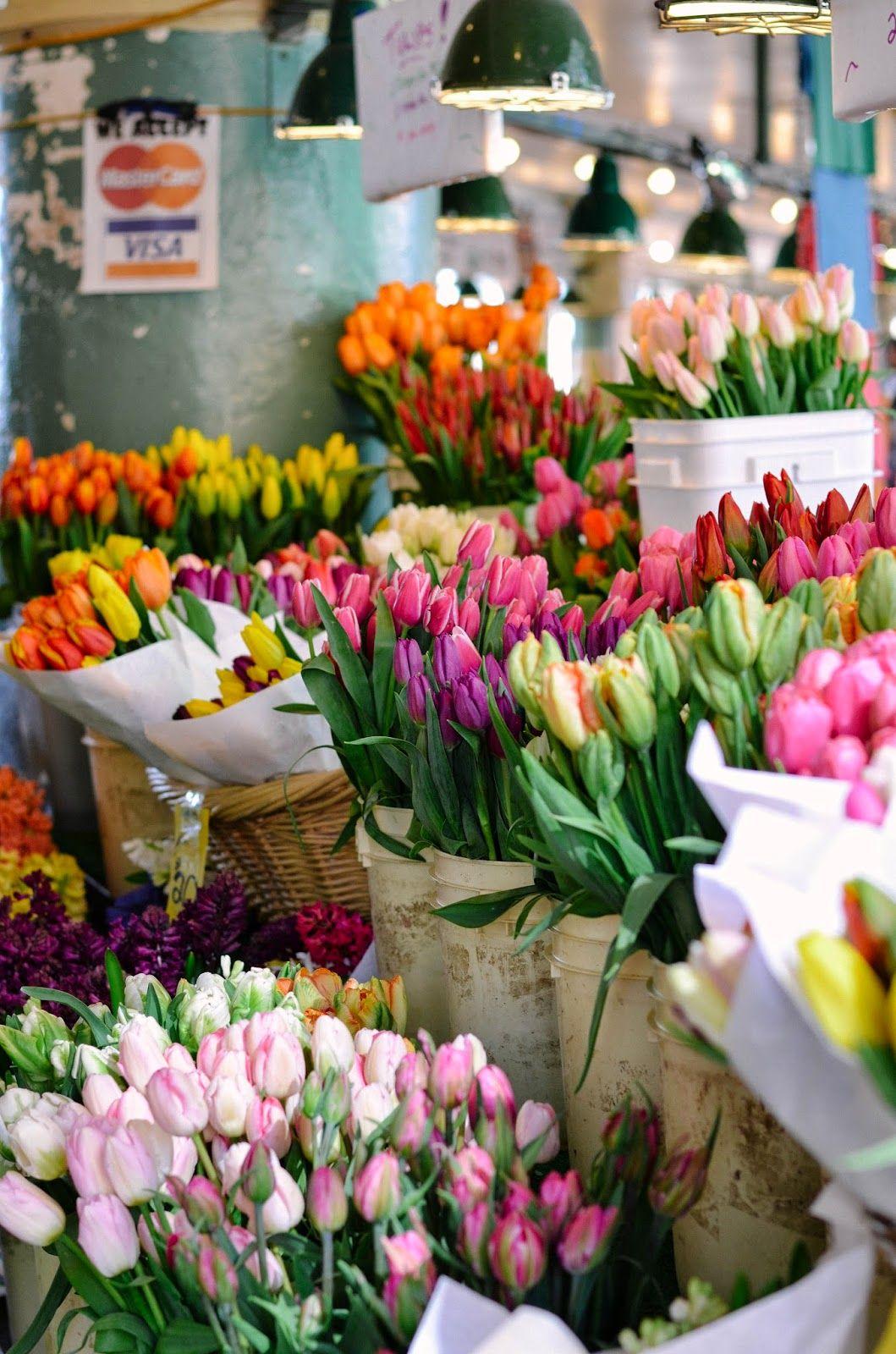 Jsquared spring break seattle wa flower aesthetic
