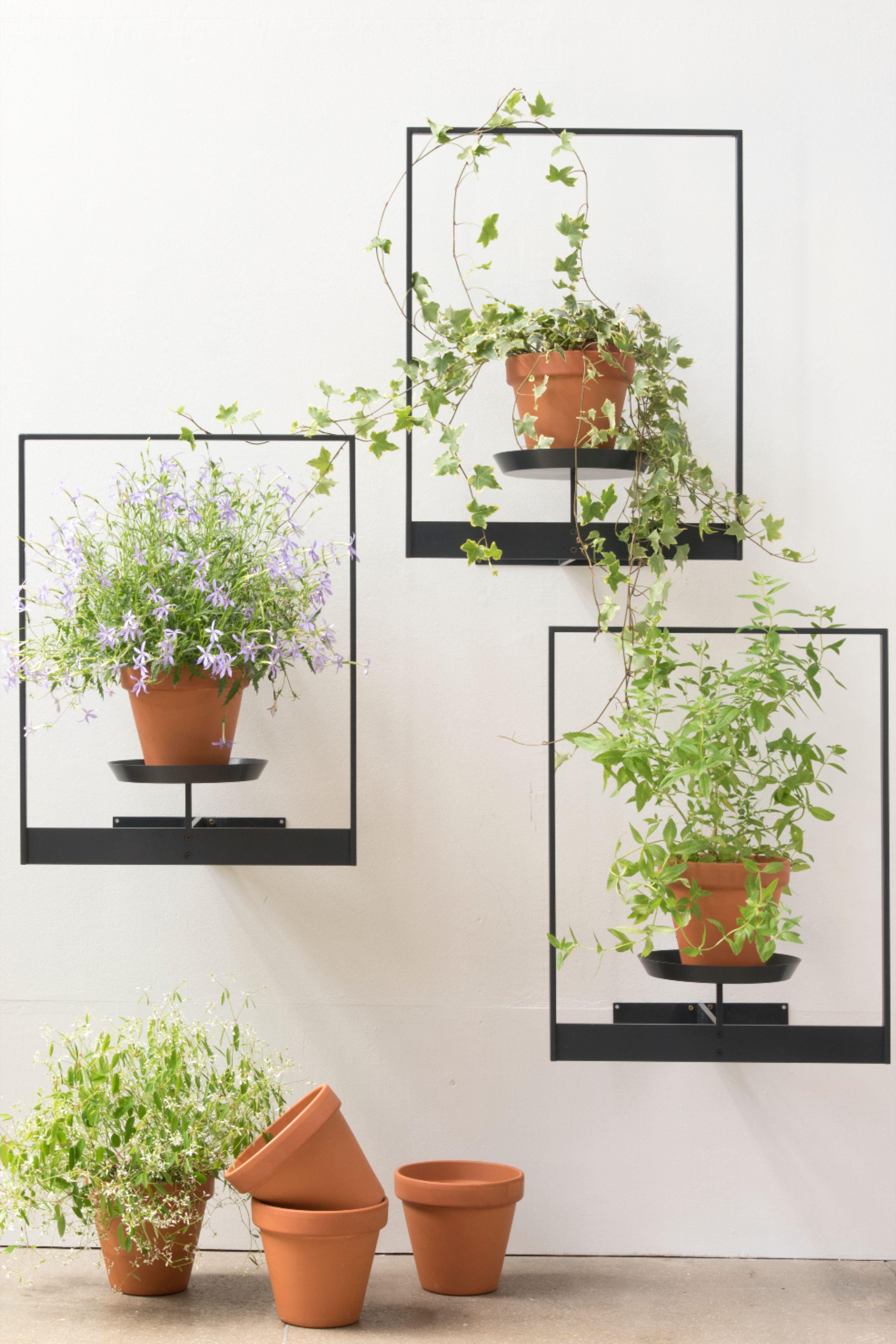 Interieur En Mode Jardin D Hiver En 2020 Support Pour Plante Tablettes Pour Plantes Etagere Plante