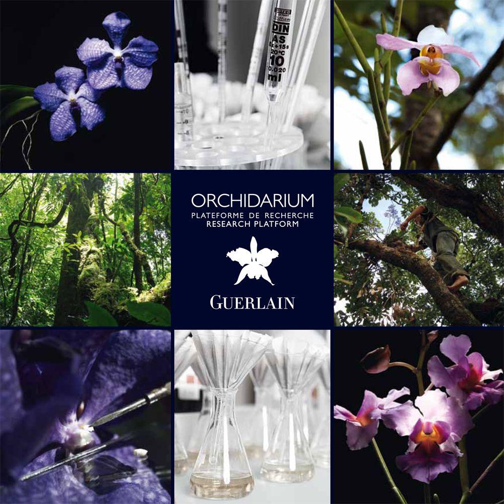 guerlain orchidarium