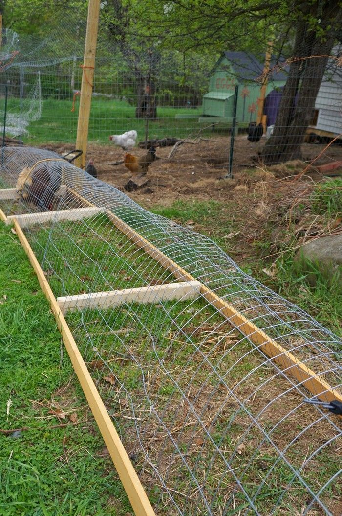 Moveable-Chicken-Tunnel-1.jpg (700×1054)