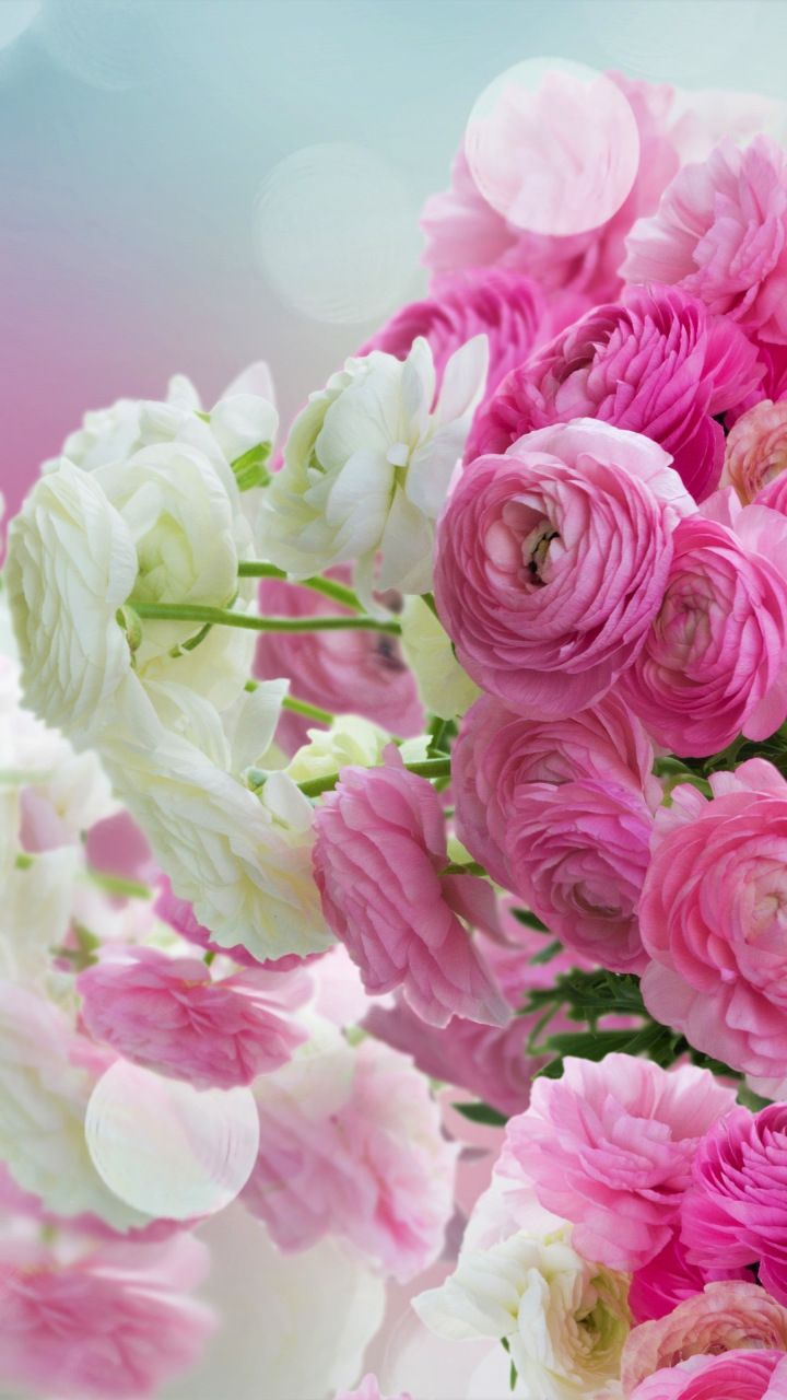 White And Pink Flowers Bouquet 720x1280 Wallpaper Flowers