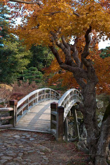 Japan - Wooden bridge in autumn at Genkyuen Garden in Hikone - Photo by Photo Japan