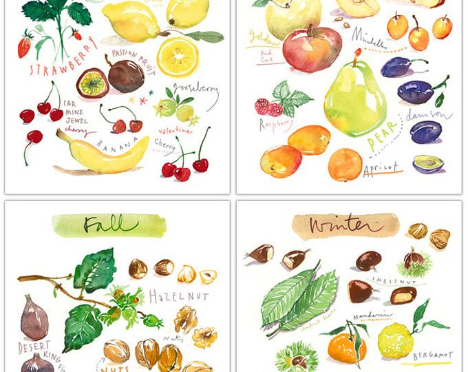 set of 4 seasonal food art prints kitchen art watercolor painting vegetable illustration set. Black Bedroom Furniture Sets. Home Design Ideas