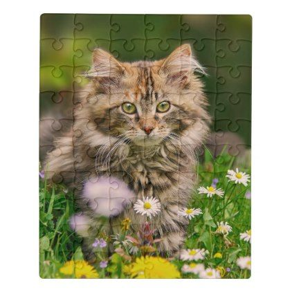 Cute Fluffy Maine Coon Kitten Cat in Flowers Photo Jigsaw Puzzle - photo gifts cyo photos personalize