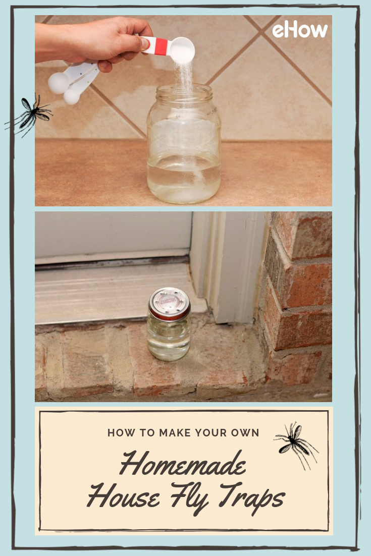 Homemade House Fly Traps Fly traps, House fly traps