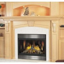 Napoleon Modern Fireplaces Gas Fireplaces Gas Fireplace